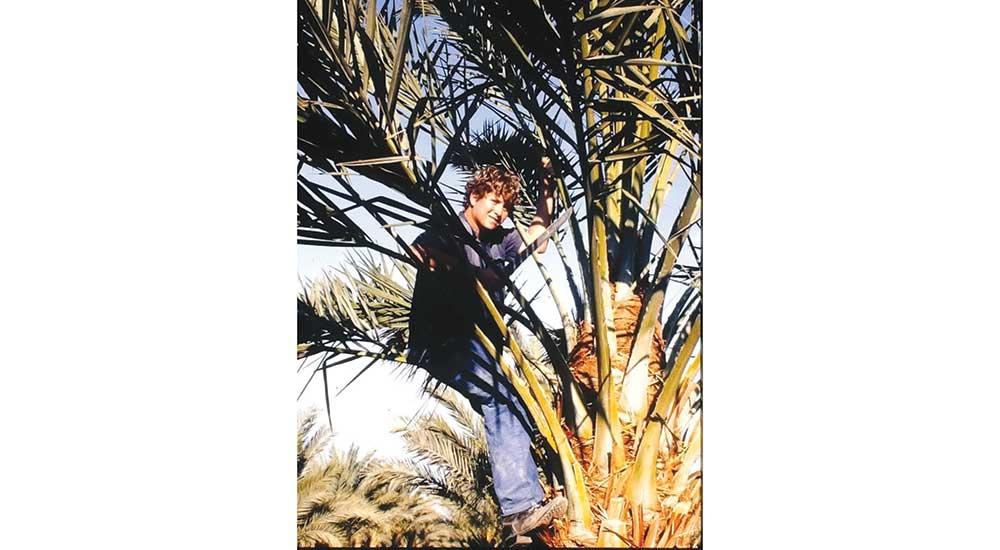 Young Judaea Stu in Tree