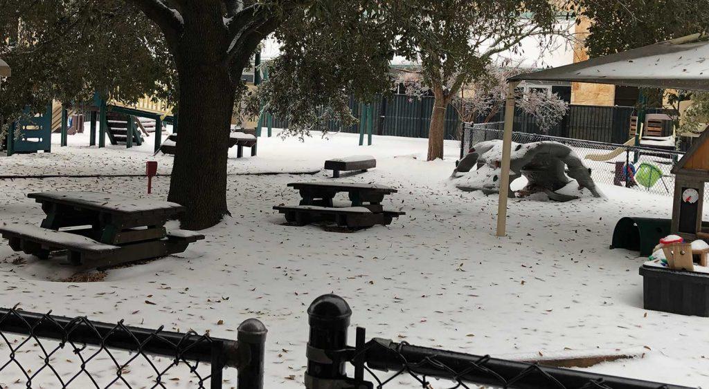 ECP Winter Snow