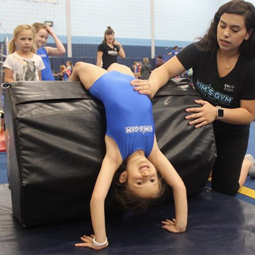 Kims Gym School Aged
